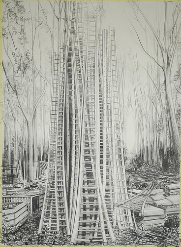 Wistful graphite drawing of a ladders in landscape